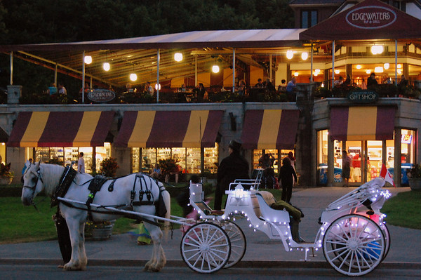 Carriage Ride, Anyone?