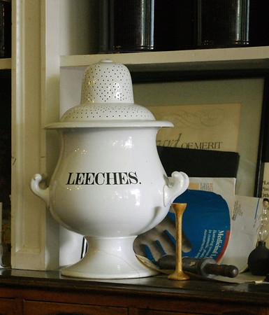 Jar for leeches inside the Niagara Apothecary